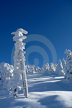 Snowy Signpost Stock Image - Image: 13922781
