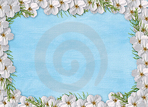 Card For Holiday With Flowers Stock Photo - Image: 13924910