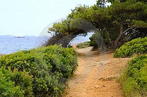 Murter Island Royalty Free Stock Photography - Image: 13939437