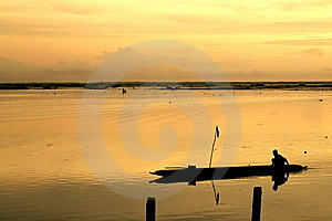 Thale Noi, Non-hunting Area Royalty Free Stock Photography - Image: 13941637