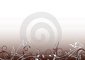 Flowers Decoration Stock Photography - Image: 13945812