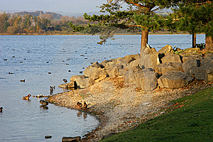 Lakeside Scene Royalty Free Stock Photography - Image: 13946007