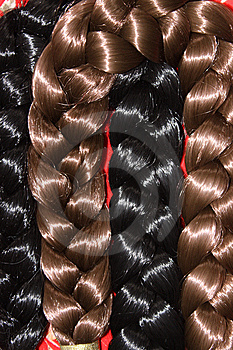 Switch Plaits For Women Stock Image - Image: 13958761