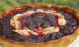 Fruit Tart Stock Photography - Image: 13967332