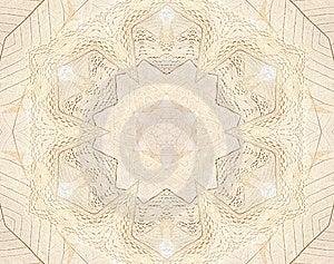 Beige Kant En Bladachtergrond Royalty-vrije Stock Foto - Afbeelding: 13970015
