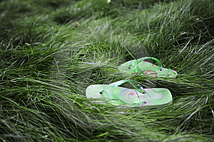 Flipflops In The Grass Stock Photos - Image: 13988383
