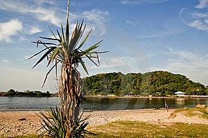 Boca Da Barra Stock Photo - Image: 13989720