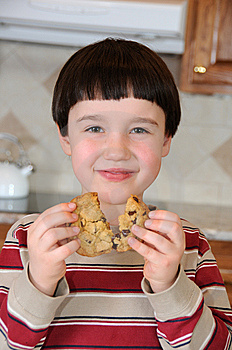 Chocolate Chip Joy Stock Image - Image: 13997801