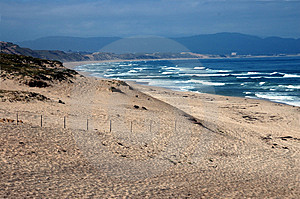 Monterey Beach Stock Photography