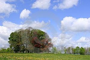 Ημέρα μπλε ουρανού Στοκ φωτογραφία με δικαίωμα ελεύθερης χρήσης