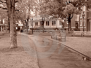 Rainy Day At The Park In Harvard Square Stock Photos