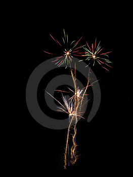 Fireworks Flowers Stock Photos