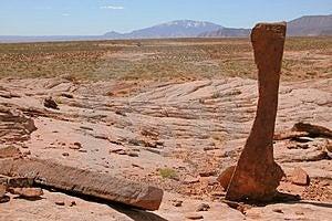 Cobra Rock Free Stock Photos