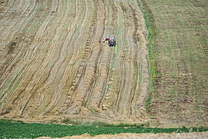 Harvest 02 Stock Photo - Image: 14002150
