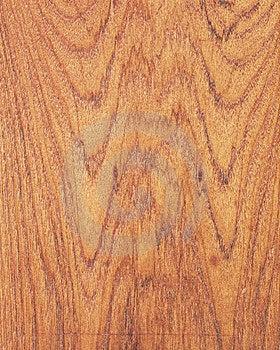 Wood Texture Background_teak_24 Royalty Free Stock Photos - Image: 14006488