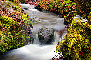 Small Stream Royalty Free Stock Photo - Image: 14007715