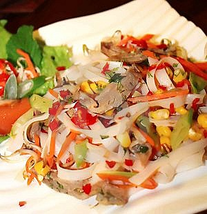 Duck & Noodle Salad Stock Photography - Image: 14008352