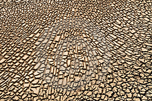 Arid Soil Royalty Free Stock Images - Image: 14014669