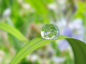 Waterdrop Royalty Free Stock Images - Image: 14017229