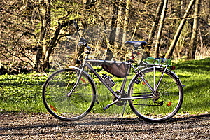 Bicycle Stock Photos - Image: 14021273