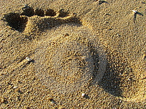 Footprint On A Sandy Beach Stock Photo - Image: 14021930