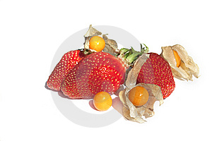 Strawberries And Physalis Isolated On White Stock Images - Image: 14029094