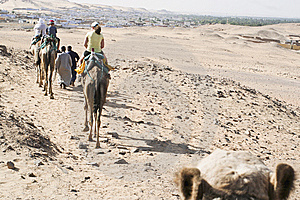 Camel Ride Stock Image - Image: 14031131