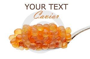 Teaspoon Red Caviar Stock Photos - Image: 14043123