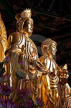 The Side Buddha And Quan-Yin Stock Photography - Image: 14048892