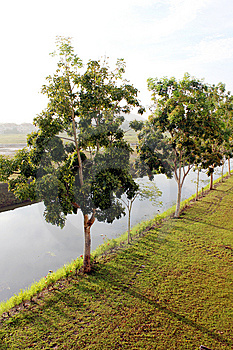 River Side Royalty Free Stock Photos - Image: 14049398
