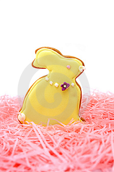 Easter Bunny Cookie Stock Image - Image: 14053951
