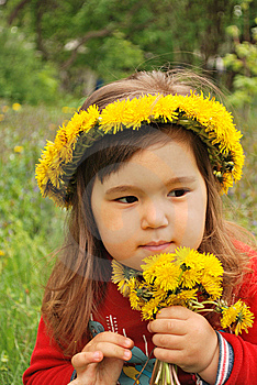 Wearing A Dandelion Diadem Royalty Free Stock Image - Image: 14056766