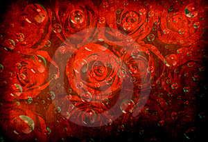 Rose Background With Various Bubbles Royalty Free Stock Image - Image: 14057736