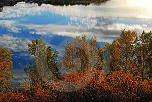 Reflexion Lizenzfreies Stockbild - Bild: 14057886