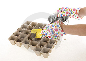 Gloves, Shovel Placing Soil Into Compost Pots Royalty Free Stock Images - Image: 14060399