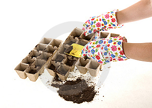 Gloves With Shovel Placing Soil Into Compost Pots Royalty Free Stock Photography - Image: 14060417
