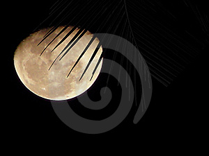 Scratch On Moon Stock Photography - Image: 14074082