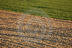 Newly Ploughed Agricultural Field In Spring Royalty Free Stock Photography - Image: 14081997