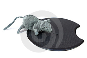 Mouse Toy Royalty Free Stock Images - Image: 14085909