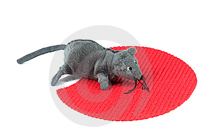Mouse Toy Stock Image - Image: 14085921