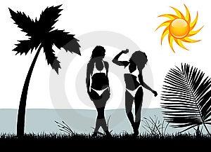 Women With Bikini Stock Image - Image: 14088031