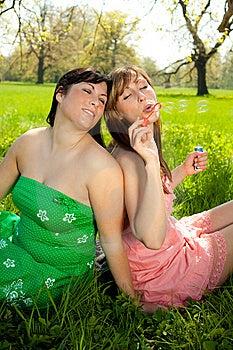 Spring Stock Photos - Image: 14091733