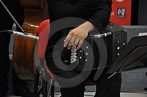 Bandoneon Player Royalty Free Stock Image - Image: 14092126