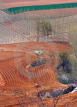 Overlook Field Stock Photos - Image: 14095143