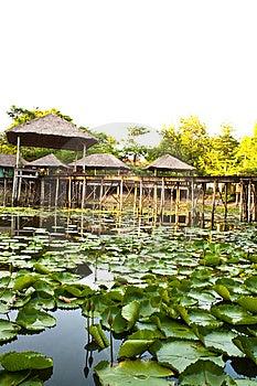 Pavilion And Pool Stock Photo - Image: 14097420