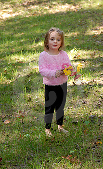 Little Girl With Daisy Bouquet Royalty Free Stock Image - Image: 1417956