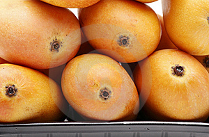 Mango Close-up Stock Image - Image: 14100741