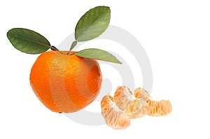 Mandarin Or Tangerine Stock Photography - Image: 14104632