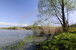 Lake In The Spring Stock Images - Image: 14105544