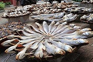 Salted Fish Stock Photo - Image: 14111000